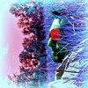 Аватар пользователя VombatVombatich