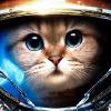 Аватар пользователя Lachrimae