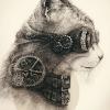 Аватар пользователя CatRobo