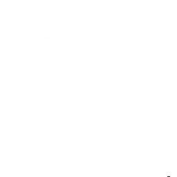 Zelipuper