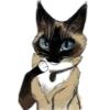 Аватар пользователя ViolettiKettu