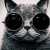 Аватар пользователя AlexanderMoroz
