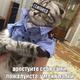 Аватар пользователя RussPower