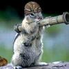 Аватар пользователя Bazooka86