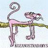 Аватар пользователя kozanostradamys