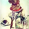 Аватар пользователя DonNoble