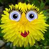 Аватар пользователя dandeliona