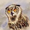 Аватар пользователя mrEagleOwl