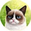 Аватар пользователя aveBethesda