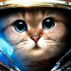 Аватар пользователя Ventrasel