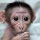 Аватар пользователя vovakh