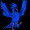 Аватар пользователя FrozenBird