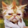 Аватар пользователя murchik66