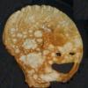 Аватар пользователя BonesFromRussia