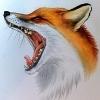 Аватар пользователя SlyFoxy
