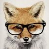 Аватар пользователя MihaFox24