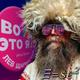 Аватар пользователя baradetsky