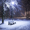 Аватар пользователя SnowFall359