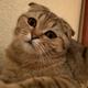 Аватар пользователя NoanN