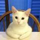 Аватар пользователя LAisen