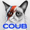 Аватар пользователя TheCats