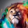 Аватар пользователя LEMOH