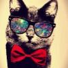 Аватар пользователя Bamboocha2587
