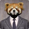 Аватар пользователя Linberg
