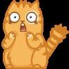 Аватар пользователя ForestCat88