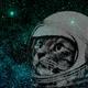 Аватар пользователя Alrakis
