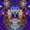 Аватар пользователя teplyiHolod