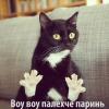 Аватар пользователя Gelbora