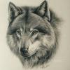 Аватар пользователя MozGdx
