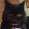 Аватар пользователя DvaTarakana