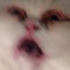 Аватар пользователя lisart