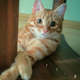 Аватар пользователя stier90