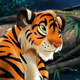 Аватар пользователя SolarTigerin