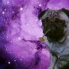 Аватар пользователя MeGusta203