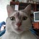 Аватар пользователя bigterka