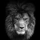 Аватар пользователя markiz85