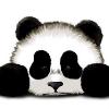 Аватар пользователя panda06