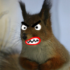 Аватар пользователя xoxazavrik