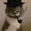 Аватар пользователя Faserr