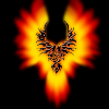 Аватар пользователя FreedomWind