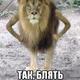 Аватар пользователя HellBells
