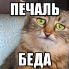 Аватар пользователя iDefti