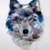 Аватар пользователя Wolflix