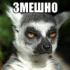 Аватар пользователя Ilninho