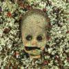 Аватар пользователя synthet