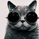 Аватар пользователя Romez1988